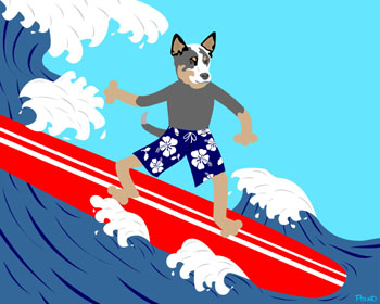 Australian Cattle Dog Surfer Surfboard Pop Art Print