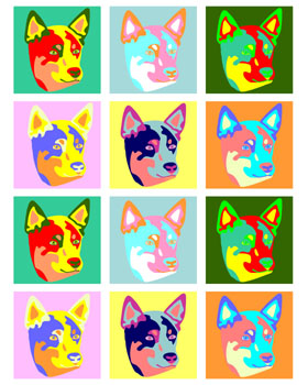 Australian Cattle Dog Retro Modern Colors Pop Art Print