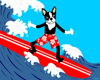 Boston Terrier Dog Surfer Surfing Surfboard Pop Art Print